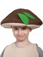 Гриб Боровик шапочка